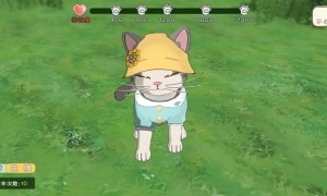 小森生活猫咪怎么快速出毛(撸猫出猫毛球经验介绍)
